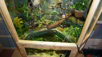 Terrariumbau mit aquarium integriert terrarien - Gartenteich abdeckung ...