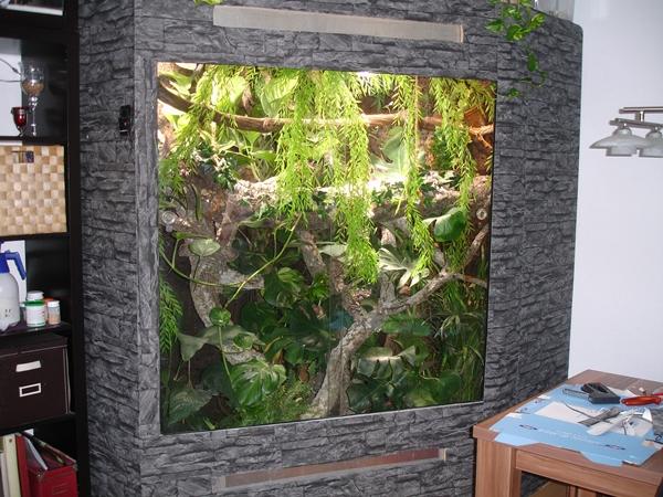 verkleidung au enwand terrarium mit tapetenfolie das terrarium. Black Bedroom Furniture Sets. Home Design Ideas