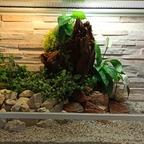 100x40x50 cm Terrarium