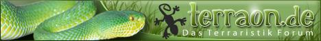 Das Terraristik Forum zum Thema Agamen, Chamäleons, Geckos, Leguane, Maskenleguane, Halsbandleguane, Warane, Schildkröten, Schlangen, Wirbellose und Amphibien im Terrarium.