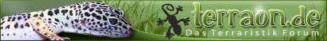 Das Terraristik Forum zum Thema Agamen, Chamäleons, Geckos, Grüne Leguane, Maskenleguane, Halsbandleguane, Warane, Schildkröten, Schlangen, Wirbellose, Amphibien uvm. im Terrarium.